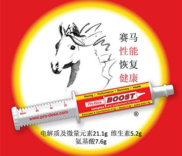 pro-dosa-chinese-logo