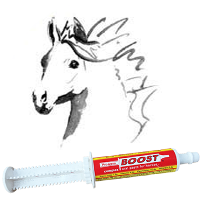 Equine Upper Respiratory Infections and Equine Herpes Virus by Dr Corinne Hills
