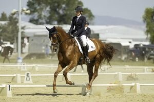 Wendi Williamson, Dressage, New Zealand